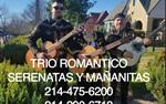 TRIO ROMANTICO en Dallas