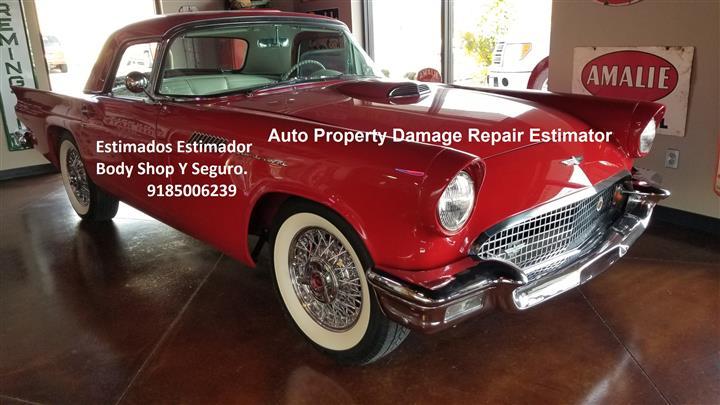 Classic Car Auto Estimator image 2