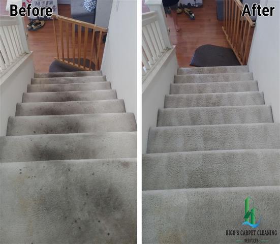 Rigo's Carpet Cleaning image 9