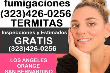 FUMIGACIONES MOLD-TERMITES en Los Angeles County