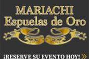Mariachi Espuela de Oro thumbnail 1