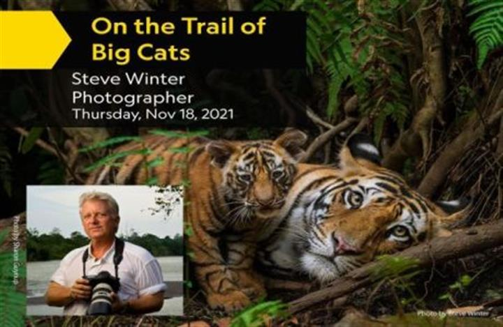 On the Trail of Big Cats image 1