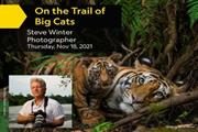 On the Trail of Big Cats en Bakersfield