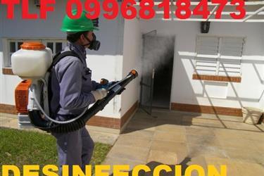 FUMIGACIONES TELF 0996818473 en Quito