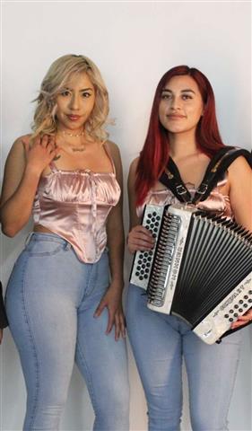 LOS MARCAMS (LIVE MUSIC) image 4