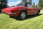 CLASSIC AND USED CARS FOR SALE