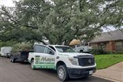 G Maya Tree Services and Lands