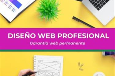 Diseño web Profesional en Los Angeles County