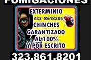 Compañía #1 Fumigaciones 24/7. thumbnail