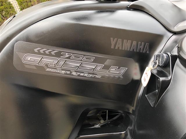 Yamaha Grizzly 2014 Special... image 2