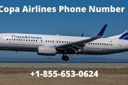 Copa airlines is a Panama flag carrier in the USA