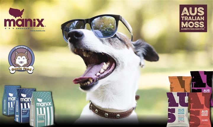 The Dog Club image 6