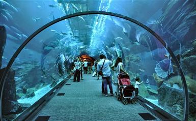 DISEÑADORES PARA DUBAI Y QATAR image 1