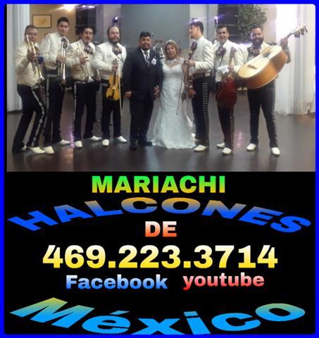 Mariachi Halcones de Mexico image 1
