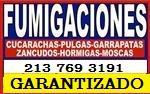 GARANTIZADO BARATITO $49 en Los Angeles