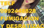 TELF 2428098 CONTROL DE PLAGAS en Quito