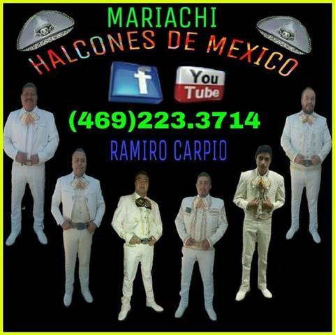 Mariachi Halcones de Mexico image 5