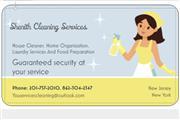 Shenith cleaner