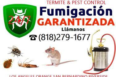 FUMIGADORES 24/7.TERMITES-BUGS en Los Angeles