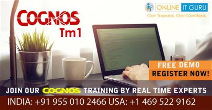 Cognos TM1 Online Training image 1