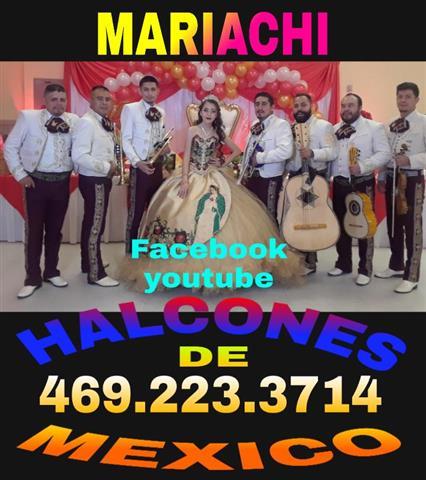 Mariachi Halcones de Mexico image 7