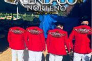 ACENDADO NORTEÑO thumbnail