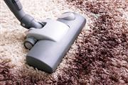 Sergio's Carpet Cleaning